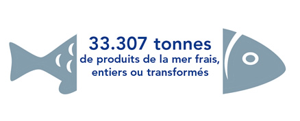 Leading Distributor of seafood products in France (wholesale)